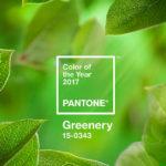 Le origini dei Pantoni e il nuovo colore Pantone 2017